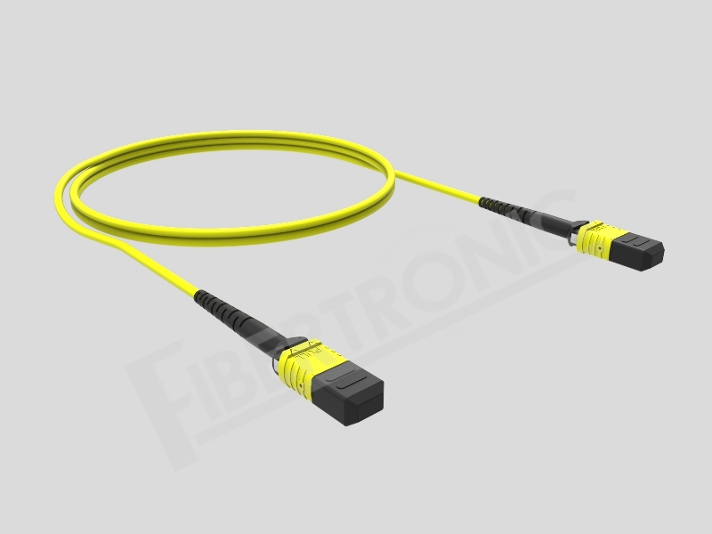 MTP-MTP SM Patch Cord 12F